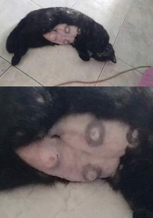 Thách bé ngủ ngon.
