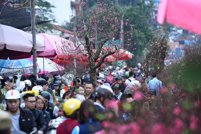 Цветоные рынки Ханоя перед новым годом (ФОТО)