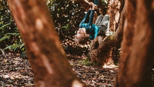 Tại sao người Đan Mạch khuyến khích trẻ trèo cây, nghịch lửa?