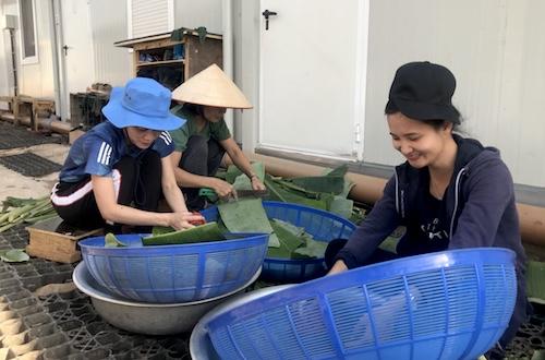 Tổ phụ nữ của bệnh viện chuẩn bị đồ để gói bánh chưng