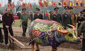 Phó thủ tướng xuống ruộng đi cày trong lễ hội Tịch điền