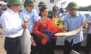 Ra khơi ngày Tết, ngư dân Quảng Trị trúng mẻ cá 4 tỷ đồng