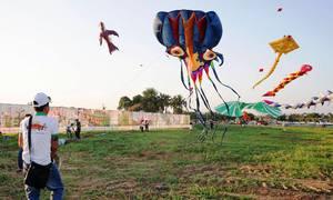 Hơn 100 cánh diều khổng lồ tranh tài ở Long An dịp đầu năm