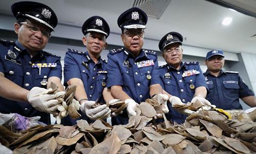 Cảnh sát Malaysia thu giữ lô hàng tê tê và vảy tê tê nặng 30 tấn. Ảnh: AFP.