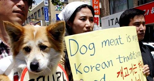 Một nhà hoạt động giơ khẩu hiệu thịt chó không phải món ăn truyền thống của Hàn Quốc. Ảnh: AP.