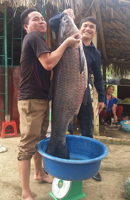 Anh Tài (trái) và người bạn rất vất vả mới nhấc bổngđược con cá. Ảnh: Lam Sơn.