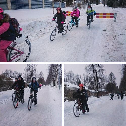 Học sinh ở thành phố Oulu đạp xe đến trường. Ảnh:Pekka Tahkola