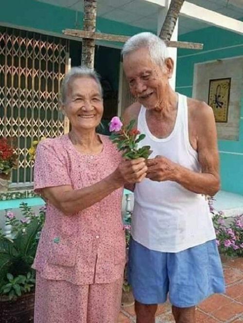 Valentine giản đơn của tình già.