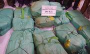 Biên phòng Hà Tĩnh bắt gần 300 kg ma túy đá ở cửa khẩu