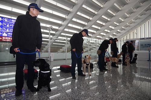 Lực lượng an ninh triển khai chó nghiệp vụ tại sân bay Đào Viên, Đài Loan. Ảnh: CNA