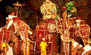 Lễ hội rước voi kéo dài 3km ở Sri Lanka