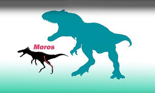 Kích thước loài Moros intrepidus so với hậu duệ T-rex. Ảnh: Independent.