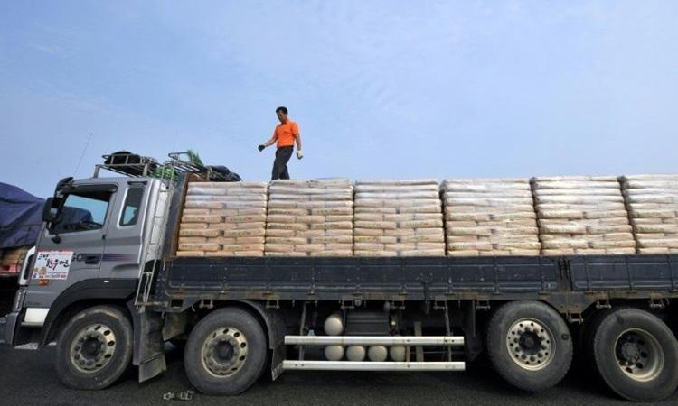 Một lái xe Hàn Quốc kiểm tra mối buộc bao tải bột mỳ vận chuyển cho Triều Tiên trước khi vượt qua biên giới liên Triều ở Paju, phía bắc Seoul. Ảnh: AFP.