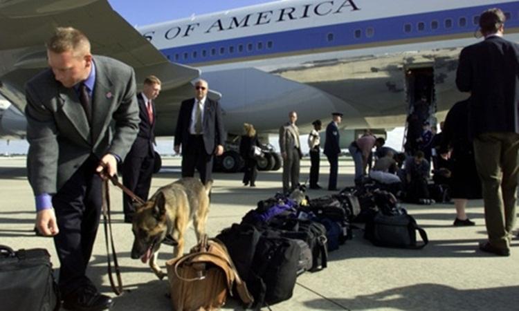Chó nghiệp vụ bảo vệ tổng thống Mỹ phải trải qua một quá trình huấn luyện gắt gao. Ảnh: AFP.