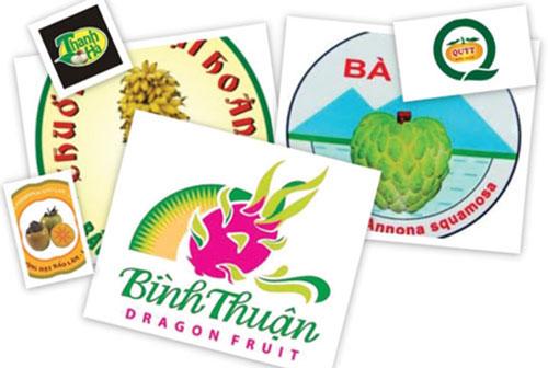Việt Nam hiện có 63 sản phẩm nông sản được bảo hộ chỉ dẫn địa lý.