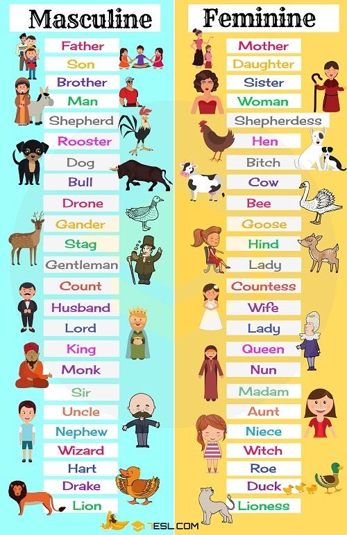 Danh từ tiếng Anh theo giới tính