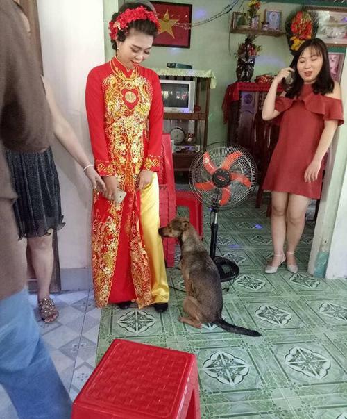 Chú cún cưng dường như không muốn xa cô chủ.