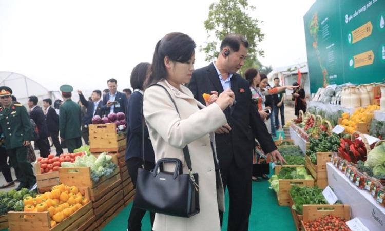 Hyon Song-wol tỏ vẻ quan tâm tới sản phẩm rau quả sạch. Ảnh: