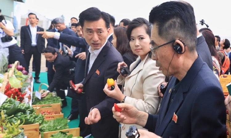 Nữ ca sĩ nổi tiếng Triều Tiên thử nếm ớt sạch tại Hải Phòng