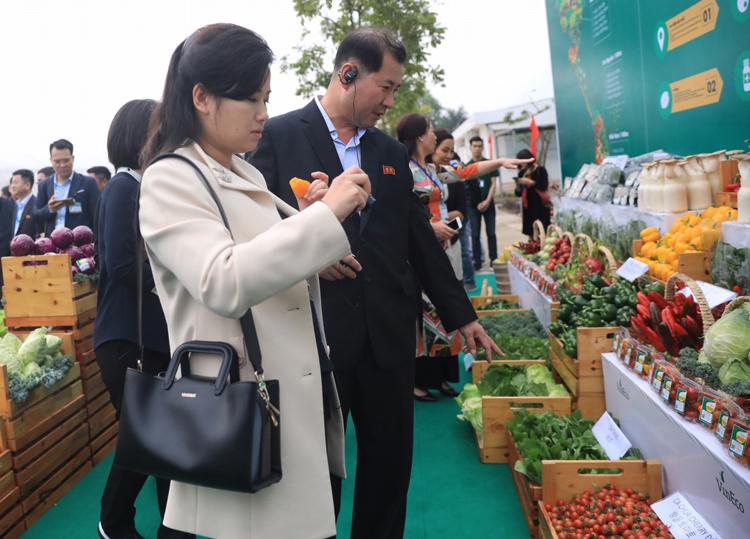 Ca sĩ tay cầm quả ớt ngọt màu vàng, tay còn lại chụp ảnh các loại rau quả. Ảnh: Hữu Khoa