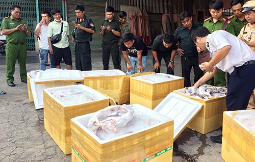 Lực lượng chức năng kiểm tra 7 thùng xốp chứa mèo. Ảnh: Nguyệt Triều.