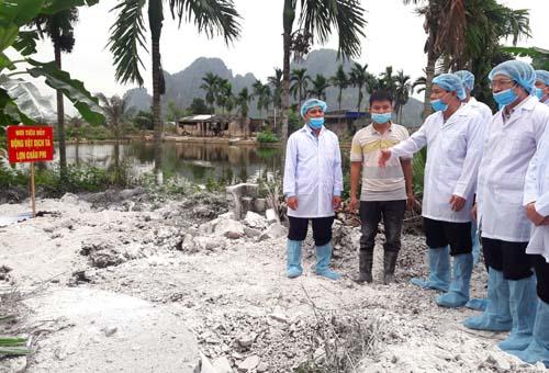 Bộ trưởng Nông nghiệp Nguyễn Xuân Cường đi kiểm tra công tác phòng chống dịch tả lợn châu Phi tại Hải Phòng ngày 2/3. Ảnh: Khương Lực.