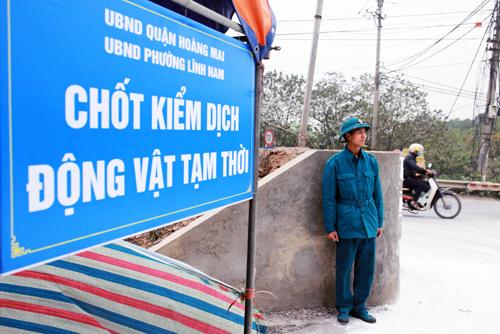 Chốt kiểm dịch được lập tại địa bàn phường Lĩnh Nam, quận Hoàng Mai, Hà Nội. Ảnh: Tất Định.