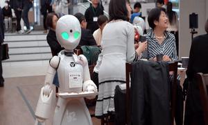 Robot phục vụ do người khuyết tật điều khiển ở Nhật Bản