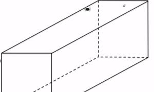 Bài toán tính quãng đường di chuyển ngắn nhất của con nhện