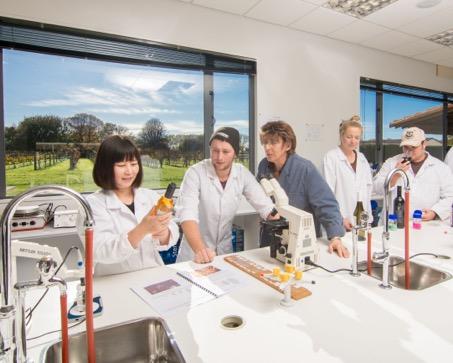 Những chính sách giáo dục hấp dẫn giúp New Zealand thu hút du học sinh