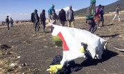 Con vít có thể hé lộ nguyên nhân máy bay Ethiopia rơi
