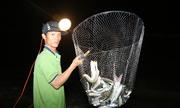 Bơi xuồng vợt cá trên đầm ở Nha Trang