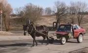 Nông dân Belarus tự chế ôtô ngựa kéo