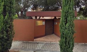 Nhóm đột nhập sứ quán Triều Tiên ở Tây Ban Nha là ai?