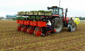 Máy trồng cây siêu tốc có thể hoạt động trên cánh đồng lớn