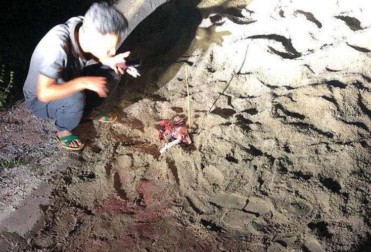 Khu vực sân vận động Kim Động, nơi cháu bé bị đàn chó tấn công. Ảnh: Bảo Sơn