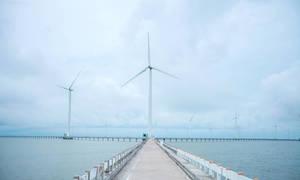 Những cánh đồng điện gió lớn ở Việt Nam