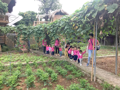 100% học sinh Shining Star sử dụng nguồn thực phẩm sạch lấy từ nông trại.