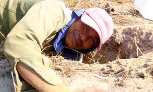 Thọc que đào bắt dông trên bãi cát ở Vũng Tàu