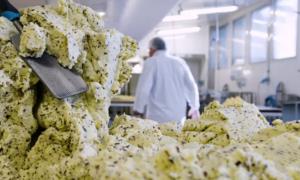 Đầu bếp Pháp phát minh loại bơ làm từ rong biển và tảo