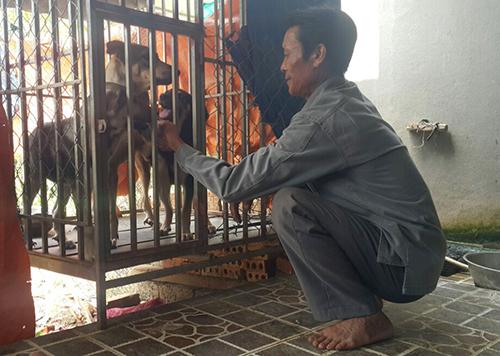 Ông Đào Xuân Hạnh đang chăm sóc 3 con chó được nhốt trong lồng sắt tại nhà riêng. Ảnh: Nguyễn Hải.