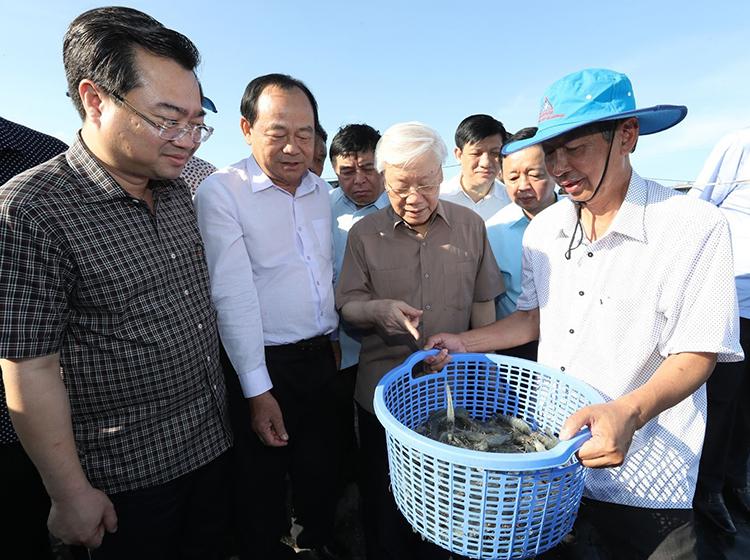 Tổng bí thư, Chủ tịch nước Nguyễn Phú Trọng thăm mô hình nuôi tôm công nghiệp tại Kiên Giang hôm 13/4. Ảnh: TTXVN