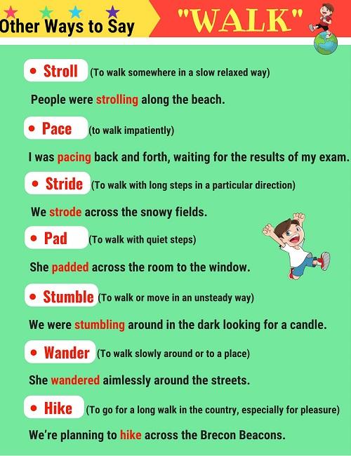 Những động từ thay thế walk