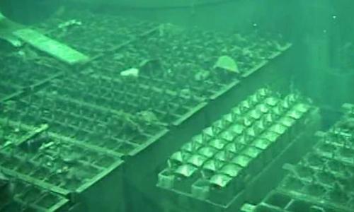 Nhiên liệu trong bể chứa gần lò phản ứng số bốn được di dời năm 2014. Ảnh: AFP.