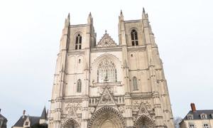 Thánh đường đồng loạt rung chuông vì Nhà thờ Đức Bà Paris