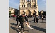 Tìm ra hai cha con trong ảnh chụp ngoài Nhà thờ Đức Bà Paris trước vụ cháy