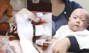 Cậu bé sơ sinh nhỏ nhất thế giới ra viện ở Nhật Bản