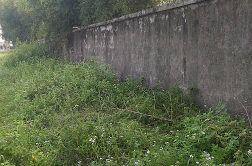 Địa điểm nơi ông Ngọc phát hiện bé gái bị tấn công.