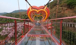 Cầu kính 5D cao 22 m đầu tiên tại Việt Nam