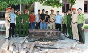 Hà Tĩnh bắt xe khách chở gỗ quý và động vật hoang dã